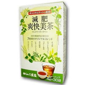 がんこ茶家 減肥爽快美茶 4g×30袋*配送分類:1