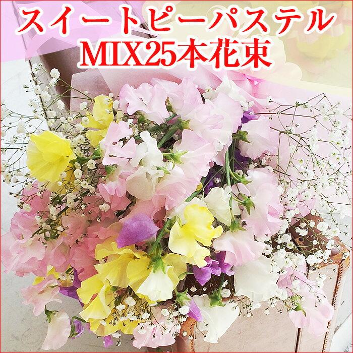 スイートピーパステルMIX25本の花束:【卒業御祝・送別会など】:【全ての御祝用】【成人式御祝用】