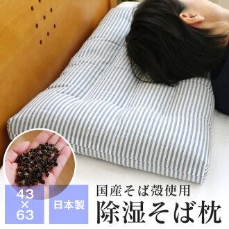 覺醒 sukkiri ♪ 驅蟲劑和殺傷害蟲,健康防黴效果! fs3gm 除濕機蕎麥枕、 蕎麥枕日本製造的 / 母豬