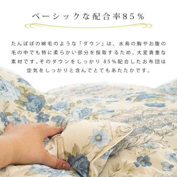 羽毛布団シングルロングシングルロング150×210「Agnes」アニエスフランス産ホワイトダウン85%二層キルトツインキルト羽毛掛け布団羽毛ぶとん日本製国産【送料無料】