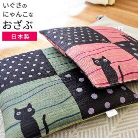国産 い草 座布団 「キャット」 正方形 約45×45cm いぐさ 藺草 座布団 さぶとん 日本製 ねこ にゃんこ 猫