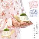 \数量限定/ 敬老の日 プレゼント 敬老の日ギフト 苔 ミニ盆栽 ぼんさい 亀 カメ パジャマ 婦人マジャマ レディース …