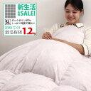 初めての羽毛布団にお勧め 羽毛布団 シングル 日本製 全国120店舗の寝具店がお届けする羽毛布団【増量】 シングルロン…