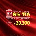 【福袋2020】 羽毛布団 シングル 有名メーカー 150×210cm グース90% 充填量1.0kg 特別協賛品価格 柄お任せ【羽毛布…