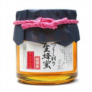 国産はちみつ さくらんぼ 450g つくし村の生蜂蜜 国産ハチミツ