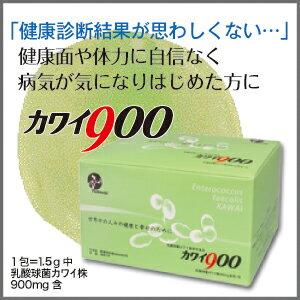 カワイ900乳酸球菌カワイ株900mg含有/包