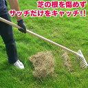 サッチ取りくん 庭掃除 芝掃除 枯草 枯れ屑 枯れ芝 芝生 園芸