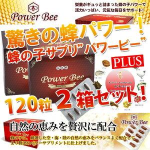 パワービー (Power Bee Plus) 120カプセル 2箱セット サプリ 健康食品 栄養補助食品 蜂の子