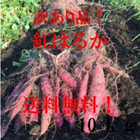 【産地直送】 さつまいも(紅はるか)訳あり10kg 送料無料!!(北海道、沖縄、離島は別途送料)べにはるか!