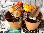 【送料無料】日本製吉野杉のペアフリーカップ&お花のギフトセット