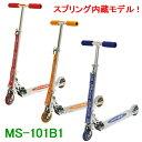 Ms 101b1