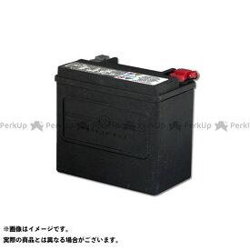 【エントリーで最大P20倍】ハーレーダビッドソン H-D・AGM標準装備バッテリー HARLEY-DAVIDSON