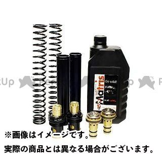 送料無料 マトリス XJ6N フロントフォーク 【保証書付】XJ6(09-) FSE kit