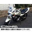 ワールドウォーク バリオス2 ゼファー カイ ZR-7 汎用ビキニカウル DS-01 typeR(メタリックシャンパンゴールド)