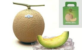 ≪果物の王様≫静岡産クラウンメロン1.3kg×1玉