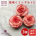 送料無料 アップルアンドローゼス バラの花咲くミニタルトS 3個 apple&roses 信州安曇野 長野 リンゴタルト 林檎タル…