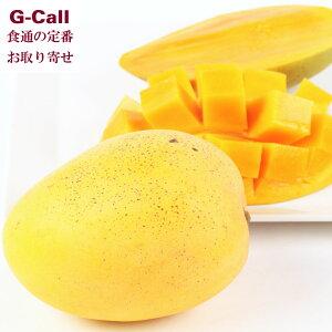 宮崎産マンゴー 金蜜 1個 350g以上 南那珂農産 みなみなかのうさん 日南 キンミツマンゴー