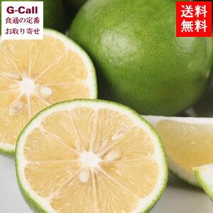 宮崎日南産 マイヤーレモン 5kg 国産レモン シトラスファーム一郎 ノーワックス 防腐剤、防カビ剤不使用