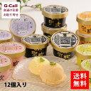 送料無料 十勝産牛乳使用!乳蔵(ちちぐら)の北海道アイスクリーム5種12個入