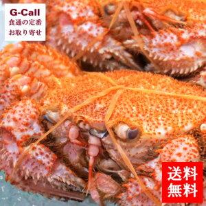 送料無料 北海道産 茹でたて毛がに 2尾で合計1kg前後、または3尾で合計1.2kg前後