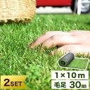 ★2個セット★ 選べる2カラー ロールタイプ リアル人工芝 U字固定ピン40本 芝丈30mm 1m×10m 幅1m ロール タイプ リア…
