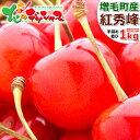 【予約】お中元 ギフト 北海道産 さくらんぼ 紅秀峰 1kg (秀品/2L以上/500g×2/手詰め) 暑中見舞い サクランボ 最高級 果物 フルーツ …