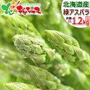 【予約】アスパラガス 北海道産 グリーンアスパラ 1.2kg (2Lサイズ限定) 特大 北海道アスパラ 緑 グリーン アスパラ グリーンアスパラ…