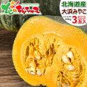 北海道産かぼちゃ大浜みやこ3玉入り(1玉1.2kg)