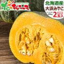 北海道産かぼちゃ大浜みやこ2玉入り(1玉1.6kg)