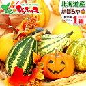 【ハロウィン】北海道産おもちゃかぼちゃ(1箱8kg/秀小/フルーツミックス/20〜30個入り)かぼちゃカボチャ10月31日ハロウィンハロウィーンHALLOWEENジャック・オー・ランタントリック・オア・トリートギフトプレゼント自宅用北海道お取り寄せ