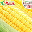 【出荷中】北海道 とうもろこし あまいんです(黄色) 10本入り北海道産 南幌町明るい農村ネットワーク 朝採り 生食 甘…