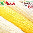 【出荷中】北海道 とうもろこし 食べ比べ(白色&黄色) 6本入り北海道産 ピュアホワイト あまいんです 南幌町明るい農村ネットワーク 朝…