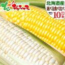 【出荷中】北海道産 とうもろこし 選べる10本セット黄 白 生 甘い スイートコーン フルーツコーン トウモロコシ とう…