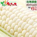 【出荷中】北海道産 とうもろこし ホワイトショコラ (6本) 白 生 甘い スイートコーン フルーツコーン トウモロコシ …