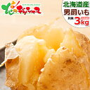 【出荷中】北海道産 新じゃが じゃがいも 男爵いも 3kg (JA共撰/LM-Lサイズ) 男爵薯 男爵 自宅用 人気 ジャガイモ 馬…