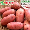 北海道産新じゃがじゃがいもレッドムーン5kg(JA共撰/LM-Lサイズ)紅じゃがいも自宅用人気ジャガイモ馬鈴薯野菜越冬北海道グルメ送料込みお取り寄せ