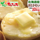 【大感謝価格】北海道産 越冬 じゃがいも きたかむい 10kg (JA共撰/Lサイズ) SALE セール 優良品種 人気 キタカムイ 北かむい 北カムイ…