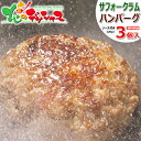 北海道応援 自宅でグルメ 食べて応援 北海道産 サフォークラム ハンバーグ 3個セット (120g×3個/ソース付き/簡易包装…
