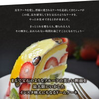 送料無料ル・パラディ【フルーツの美しさと美味しさを最大限にいかした萌え断生ケーキ】直径約20cm・高さ約11cm