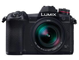 新品 Panasonic LUMIX DC-G9L 標準ズームライカDGレンズキット ブラック パナソニック