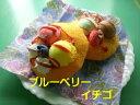 パンケーキ 1個 ブルーベリー・イチゴ 2種有 猫おもちゃ 国産マタタビ使用 【ネコポス不可】