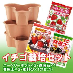 イチゴ栽培セット(ハーベリーポット)【RCP】【園芸専門店 ガーデニングの森】