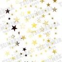 TSUMEKIRA (ツメキラ) ネイルシール Star ゴールド (ジェル専用) 【ネコポス対応】