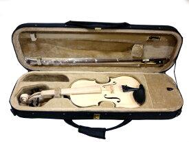 HOSCO バイオリン組立キット V-KIT-0 半完成品 ヴァイオリン 楽器組み立てキット ホスコ【P2】