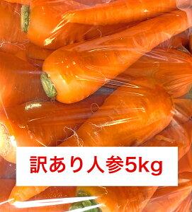 青森県産ワケありにんじん5kg 高冷地野菜減農薬 人参 訳あり ニンジン