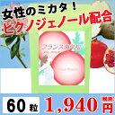 509 pinuspinaste1 n