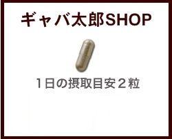 【送料無料】青森産ふくちニンニク六片種発酵黒にんにくサプリメントお徳用360粒(約6ヶ月分)【fsp2124】