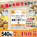 【ポイント5倍】クルクミン50mm配合 濃縮4種ウコンお徳用540粒(約9ヶ月分) 秋ウコン 春ウコン 紫ウコン クスリウコン クルクミン 肝臓…