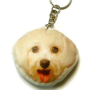 犬 キーホルダー 66 マルチーズ 【犬 ドッグ プリント キーリング 雑貨 グッズ 通販】【動物祭り】