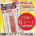 酒豪伝説20包×6シート【業務用】